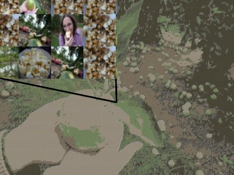 Make Huge, High-Quality Photo Mosaics in Linux