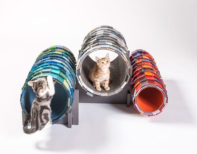 Architects Made These Amazing Cat Playrooms