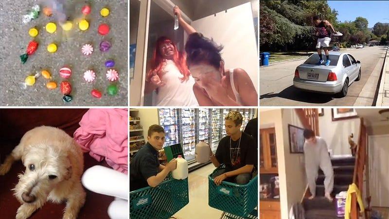 La mejor (y más graciosa) recopilación de vídeos en Vine que has visto