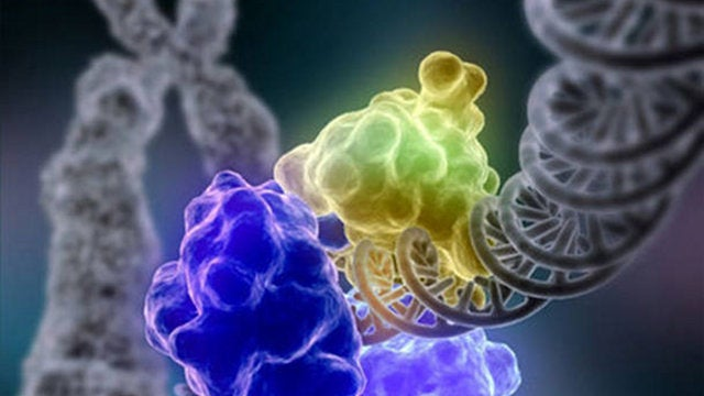 Europe approves new drug that can fix faulty genes