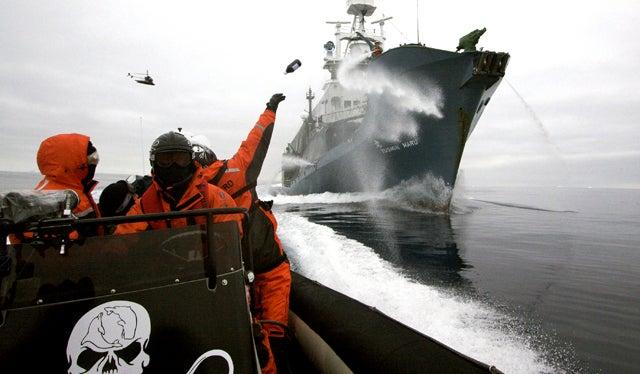 Whale Wars Jackasses Headed to Libya