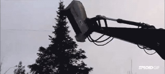 This machine erases entire trees out of existence in seconds