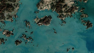 South Korean Seaweed Farms, From Space