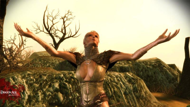 Blonde Dragon Age: Awakening Companions Don't Have More Fun