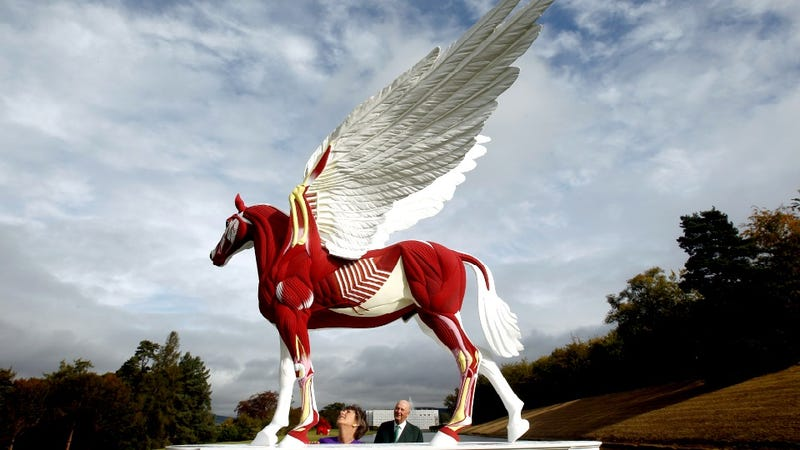 Rich People Convert Their Yard Into Pop-up Sculpture Garden