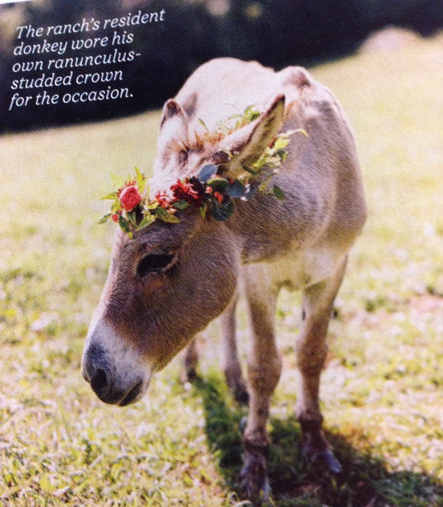 5 Insane Things From Martha Stewart Weddings Magazine, Spring 2015
