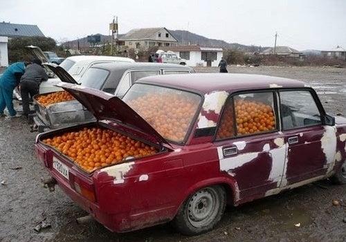 That's a Lada Oranges