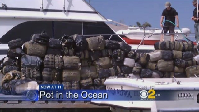 Did You Happen to Leave Your 8,000-Pound Marijuana Stash Floating in the Pacific Ocean?