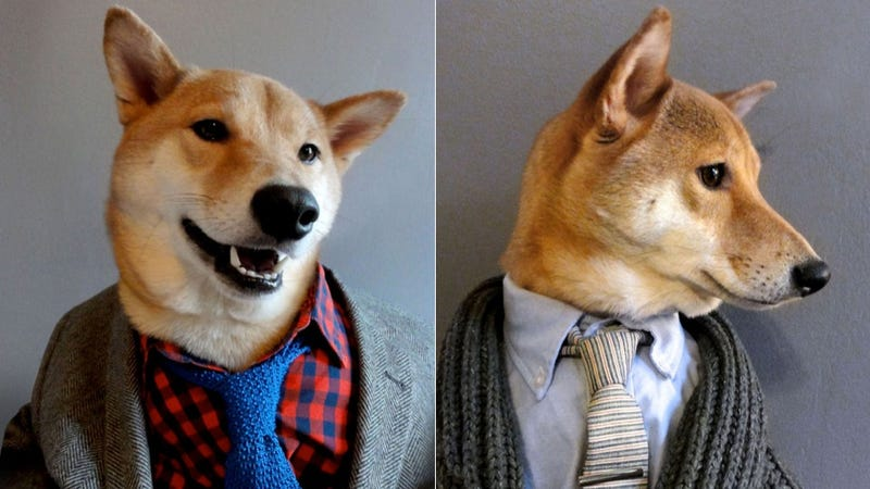 Meet Menswear Dog, a Dapper New Fashion Blogger