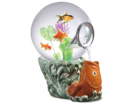 Spillarium Tank Keeps Fish Acutely Aware of Their Mortality