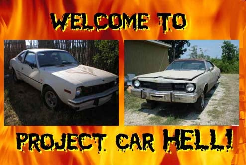 Project Car Hell, Malaise Special Editions: Hang 10 Dart or Levi's Edition AMX?