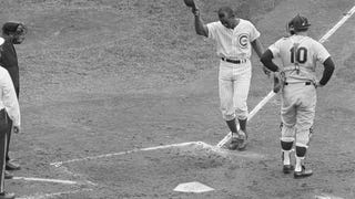 Mr. Cub Remembers