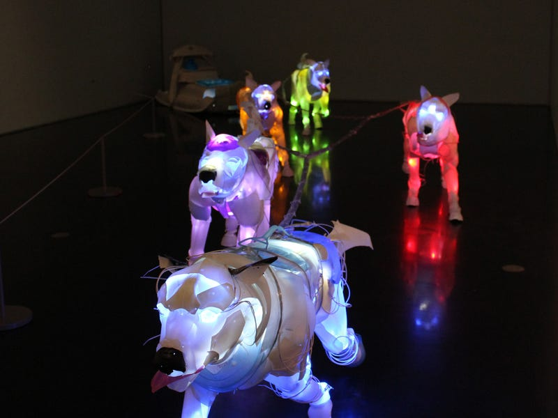 These Glowing Dogs Are Made From Trash Pulled From the Ocean