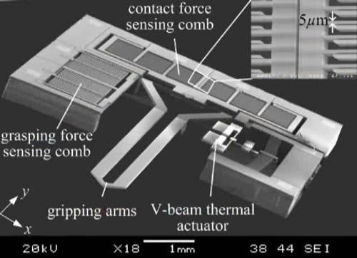 Robotic Hand May Be Tiny, Has Strong Grip
