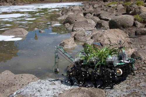 The Roboplant Is Coming For You(r Contaminated River)