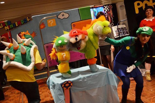 Groomer Turns Dog into Nintendo Nightmare Fuel