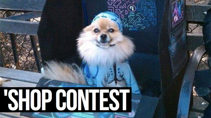 Kotaku 'Shop Contest: Tron Dog