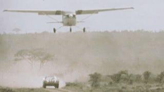 911 - Björn´s choice for the savannah