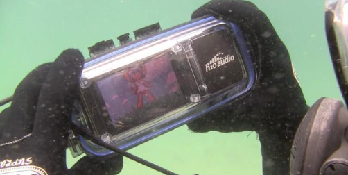 H2O's iDive300 Case Review: An iPhone Deep Beneath the Briny Sea