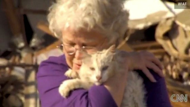 Tornado Survivor Reunited With Cat During TV Interview
