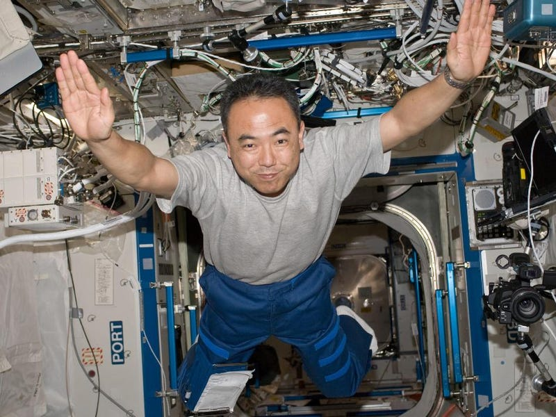 Microgravity screws us up at a cellular level