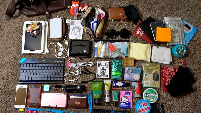 The Prepared for Anything Purse