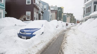 Not Even Snow Can Stop You People From Buying Cars