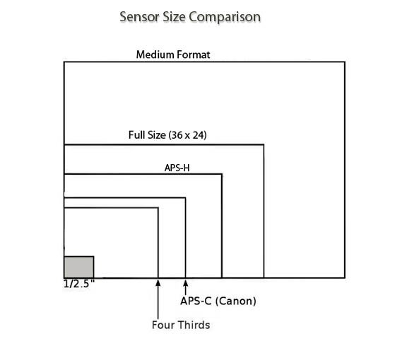Debate: What's the Best Sensor Size
