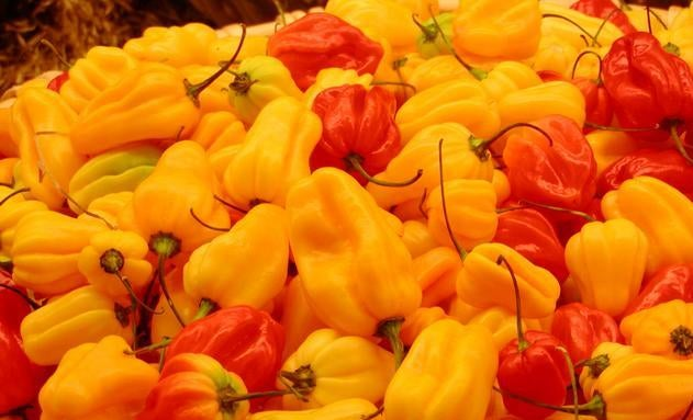 "Why do we describe spicy food as being ""hot""?"
