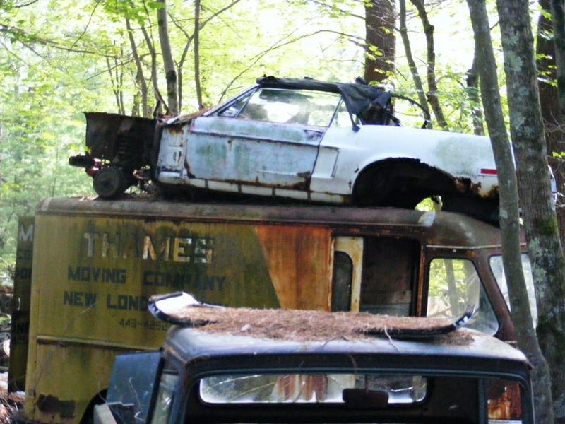 Massive Secret Mustang Junkyard Found In Rhode Island Forest