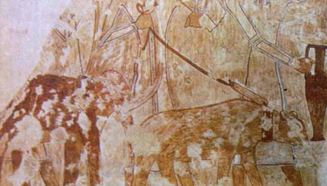 Is this a pygmy mammoth painted on an Egyptian tomb wall?