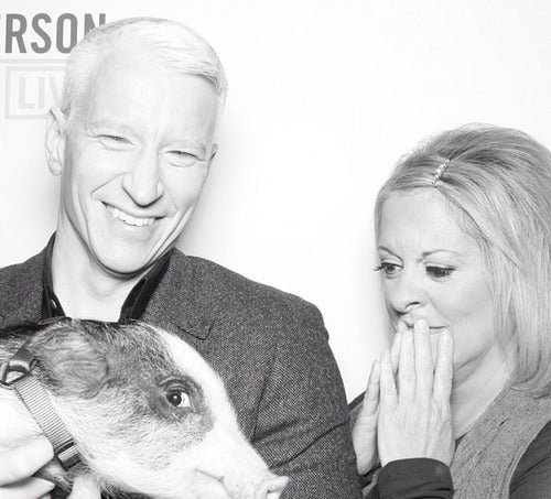 Here's a Picture of Anderson Cooper, Nancy Grace and a Pig Because Why Not