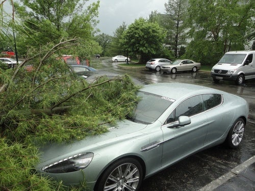 Yeah, That's A Tree On An Aston Martin Rapide
