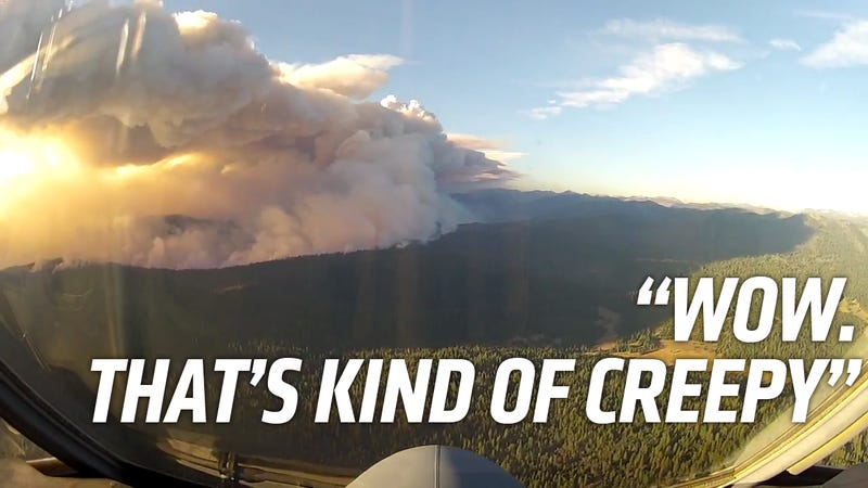 This Is What It's Like To Fight The Yosemite Fire From The Air