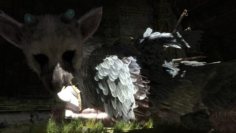 The Last Guardian Is A Feast For The Eyes