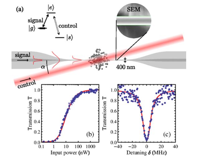 Logran almacenar luz en fibra óptica: la memoria cuántica está cerca