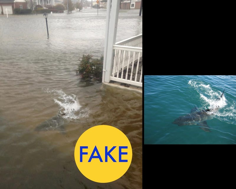These Viral Photos From Hurricane Matthew Are Totally Fake