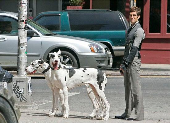 Perry Farrell: Doggapalooza