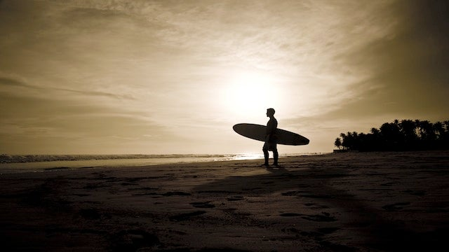 "Find the Right Routine to ""Surf"" Productivity"