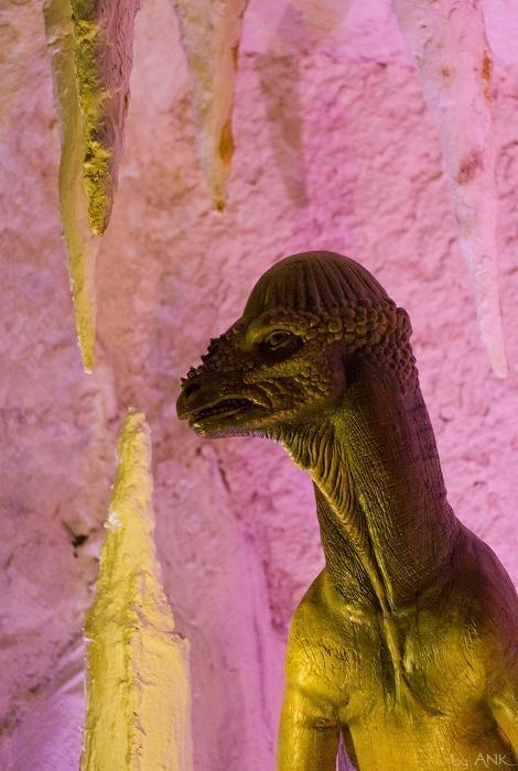 Scenes from an underground Russian dinosaur mine