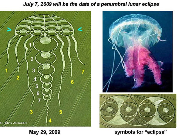 Did This Jellyfish Crop Circle Accurately Predict A Solar Storm?