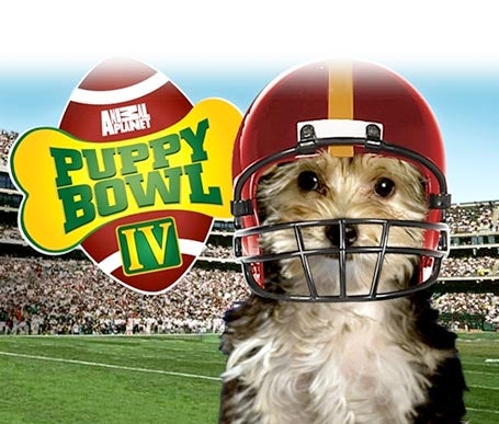 Suck A Vick: Gawker's 2010 Puppy Bowl Liveblog