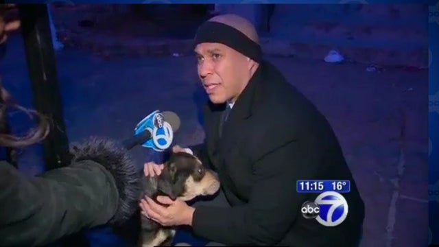 Cory Booker Continues His Steady March Toward Canonization by Personally Saving a Stranded Dog from Freezing to Death