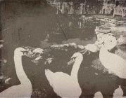 Wanokoto Webapp Turns Photos Old-Timey