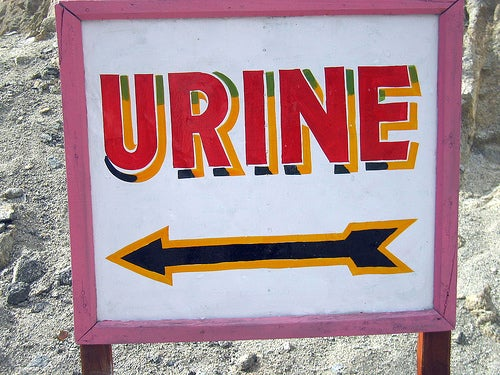 Yellow Gold: How Your Urine Could Save the World