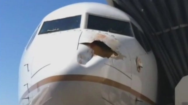 Bird Strike Does Terrifying Damage to Nose of United Airlines Plane