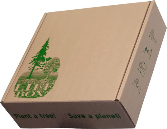 Plant This Cardboard Box to Grow 100 Trees