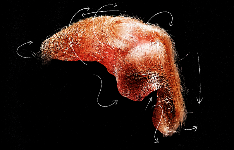 Is Donald Trump's Hair a $60,000 Weave? A Gawker Investigation