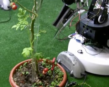 Robots Care for Plants (By Peeing on Them)