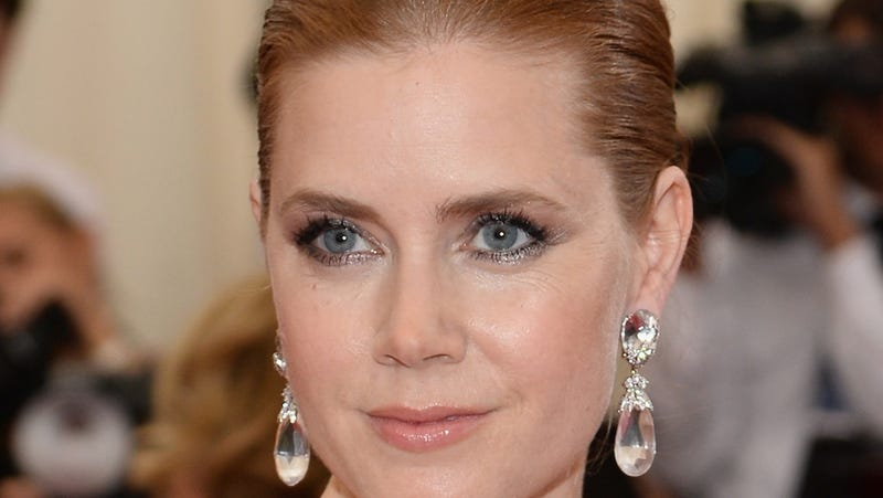 Amy Adams Gives Up First Class Seat for Soldier Sitting in Coach